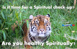 picture for spiritual appetizers - condition