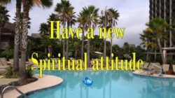 Picture of swimming pool w/palm trees for the spiritual attitude bs