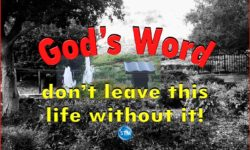 picture of burial site for the understanding god's word bs