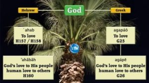 Picture of palm at llu and to love chart for the to love bible study