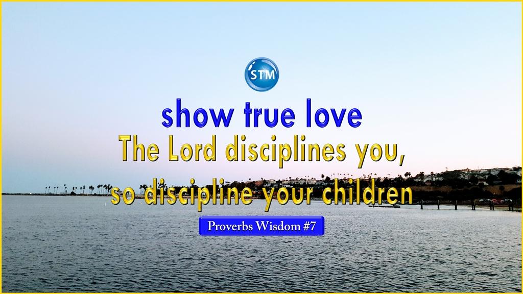 Proverbs Wisdom 7