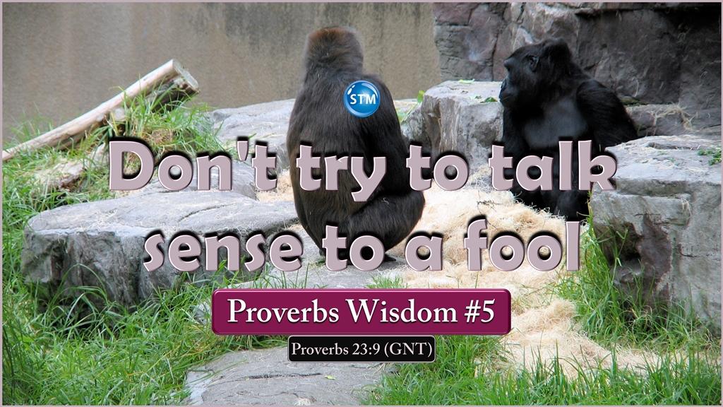 Proverbs Wisdom 5